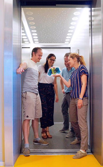 The authors are all in a one-door elevator looking at one of the structures of ASCT2 they solved in this manuscript, holding the door so that it cannot close and move. First author Alisa Garaeva on the right, Albert Guskov on the left, Cristina Paulino and Dirk Slotboom in the back.