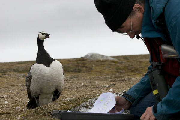 Loonen busy with research (photo Elise Biersma)