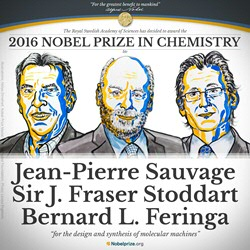 2016 Nobel Prize in Chemistry