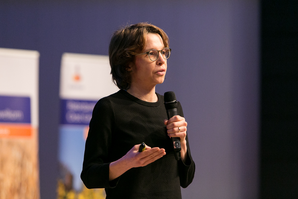 Dr. Katherine Stroebe (Associate Professor, Faculty of Behavioural and Social Sciences, University of Groningen)