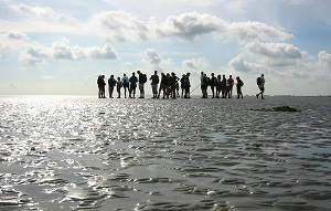 Mudwalking in the Wadden Sea