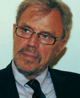 Professor Andreas Faludi Faculty Board Departments And