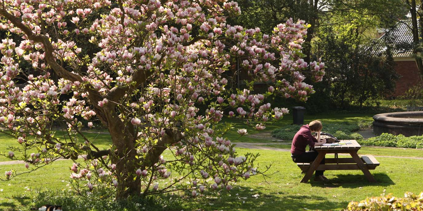 Department of Sociology - research