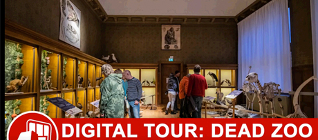 Digital tour of the exhibition 'Dead Zoo'