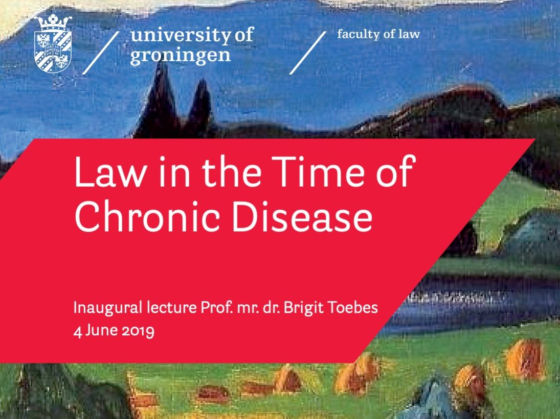 Inaugural lecture Prof. mr. dr. Brigit Toebes