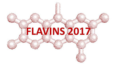 Flavins and Flavoproteins Symposium / July 2-6, 2017 / Groningen / The Netherlands