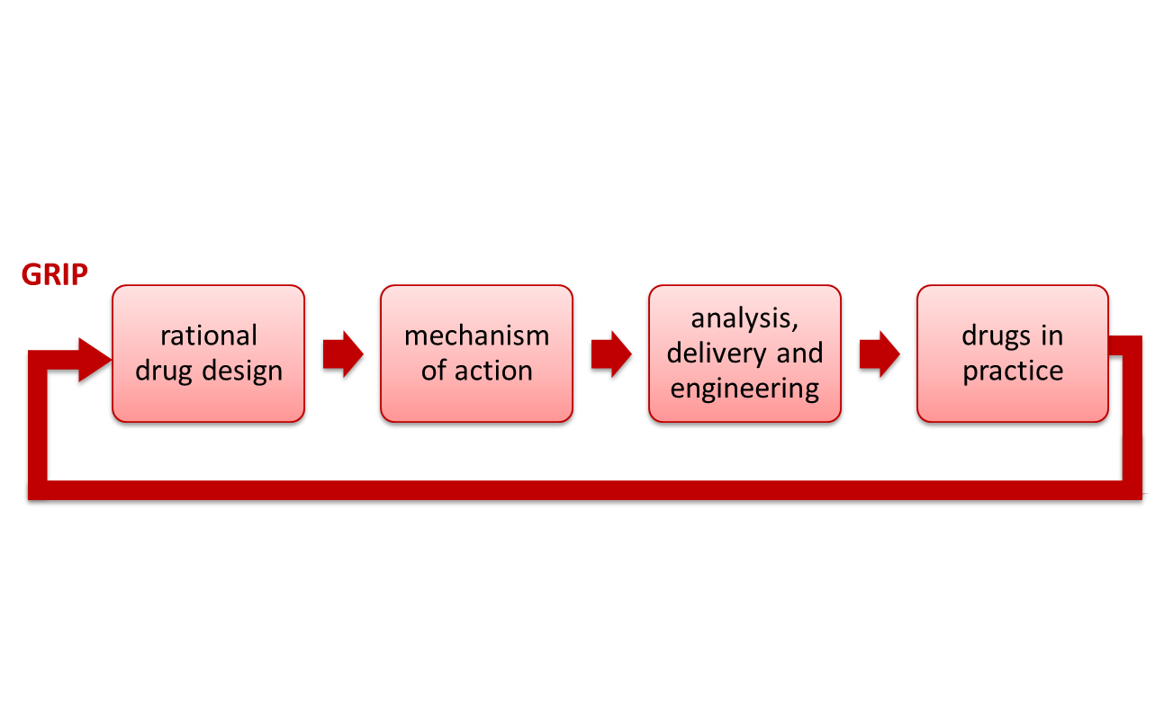 Drug development process: rational drug design, mechanism of action, analysis, delivery and engineering, and drugs in practice