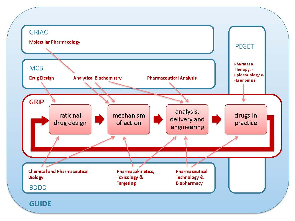The coherence of GRIP, research units and collaboration in research programs. GRIP research groups are organized around distinct parts of the drug research and development process. In this scheme the orientation around the drug development cycle and the participation in UMCG institutes and programs is depicted.