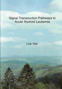 thesis Lina Han