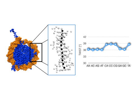 Measuring DNA-protein interactions