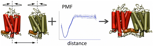 The binding energy of GPCR dimers predicts their mode of assembly.