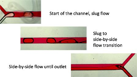 Multiple flow patterns in a microfludic channel