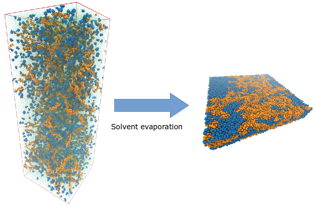 In solvent evaporation simulations, a dried blend (right-hand side of the Figure) of a polymer (orange) and a fullerene (blue) is obtained after the solvent has been slowly taken out from a starting solution (left-hand side) where polymer and fullerene molecules are dissolved in a solvent (choloroform in this case, represented with smaller green particles).