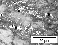 Microplasticity and debonding in steels