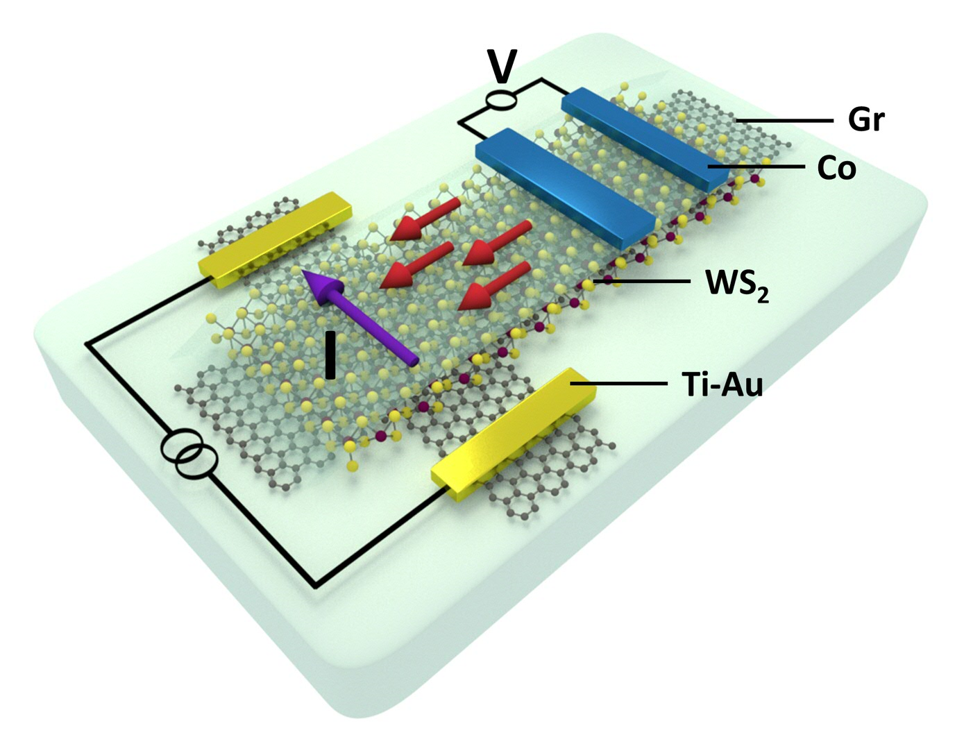 Schematics of the geometry of a nanodevice, used for observation of charge-to-spin conversion in a van der Waals heterostructure of graphene and WS2. The purple and red arrows show charge current and the generated spin accumulation, respectively.