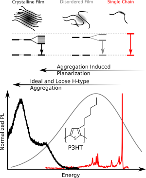 Change of the photoluminescence spectra of the conjugated polymer P3HT