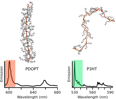 Single-molecule photoluminescence spectra of single PDOPT (left) and P3HT (right) chains