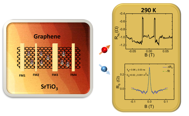 Spin lifetime in graphene on SrTiO3 at room temperature