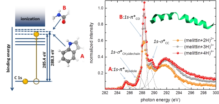 Soft X-ray spectrum for gas-phase melittin
