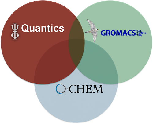 On-the-fly quantum dynamics in a complex environment