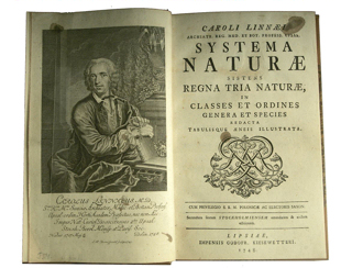 In the mid-18th century Linnaeus introduced a handy system for classifying the natural world.