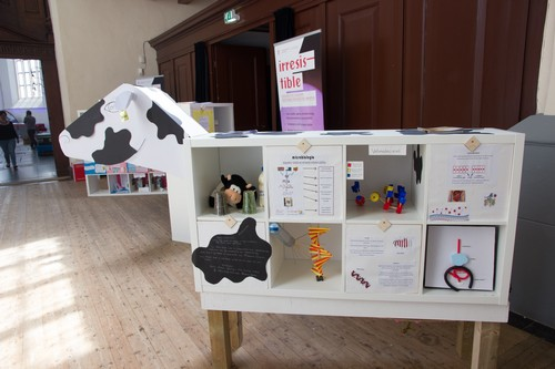 Mini exhibition compiled by pupils after following the teaching module | Photo Science LinX