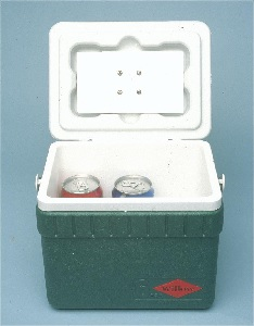A Peltier effect beer cooler | Photo SiliconChip