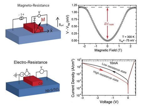 TAMR and electroresistance in aniobium doped strontium titanate (SrTiO3) semiconductor with ferromagnetic cobalt Top left: a simple device of Co on Nb doped SrTiO3 oxide semiconductor and the four-probe measurement scheme. Top right: a large TAMR value is obtained at room temperature due to a change in the junction tunnel conductance when the magnetization is rotated in respect to the direction of the current flow. Bottom left: the same device geometry is used to study the electroresistance state of the same junction (bottom right). | Illustration Banerjee group / Scientific Reports