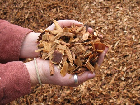 Wood chips are a common source of lignocellulose