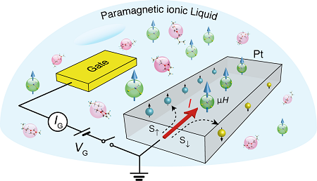 Schematic of Platinum transistor with paramagnetic ionic liquid gate. | Illustration L. Liang