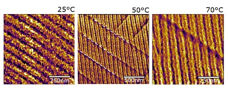 Domain walls at increasing temperature (please note different scales) | Image Noheda lab