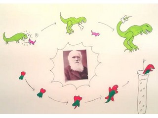 Darwinian & chemical evolution