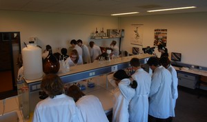 Pupils during the practical | Photo Science LinX