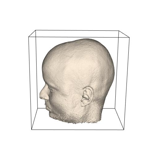 Iso-surface human head (NM)